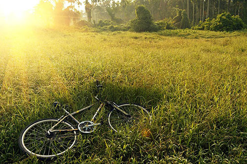 Team Logue | Burlington & Oakville real estate bicycle